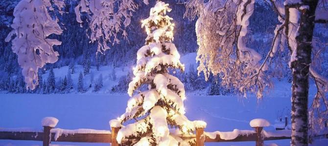 Čestit Božić i sretna nova 2015 godina
